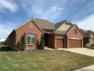 Clinton Township Single Family Home For Sale: 43676 Pintail Dr