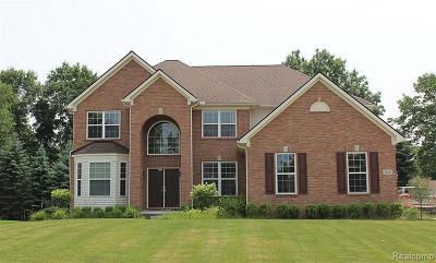 Lake Orion Single Family Home For Sale: 3820 High Grove Way