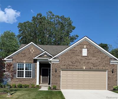Canton Single Family Home For Sale: 4133 Brookside