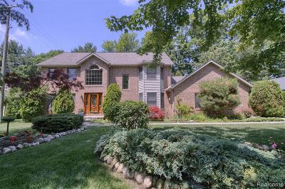 Port Huron Single Family Home For Sale: 3216 Turnberry