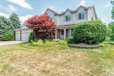 Canton Single Family Home For Sale: 40689 Bluesprings Crt