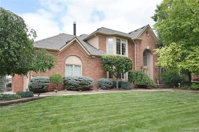 Rochester Hills Single Family Home For Sale: 3620 Blue Heron Ln