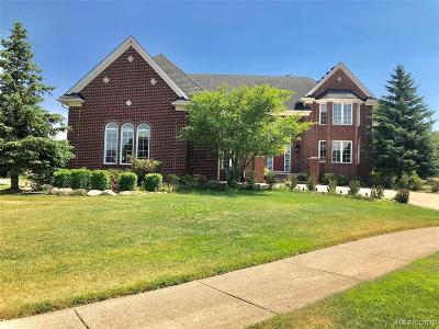 Rochester Hills Single Family Home For Sale: 801 Canyon Creek Crt