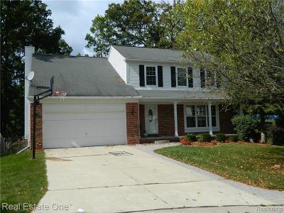 Rochester Single Family Home For Sale: 438 Thornridge Crt