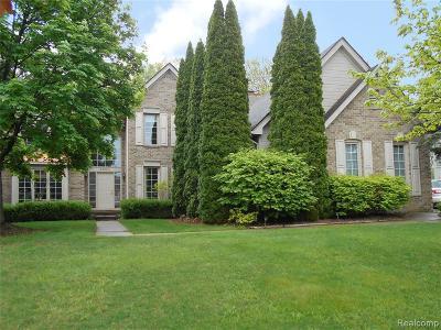 Auburn Hills Single Family Home For Sale: 4380 Arcadia Dr