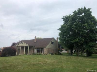 Shelby Twp Single Family Home For Sale: 8693 Hedgeway Dr