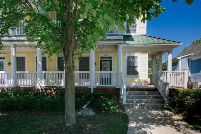 Canton Condo/Townhouse For Sale: 256 Constitution St