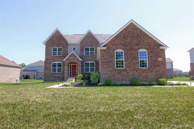 New Baltimore  Single Family Home For Sale: 54144 Mar Lake Dr