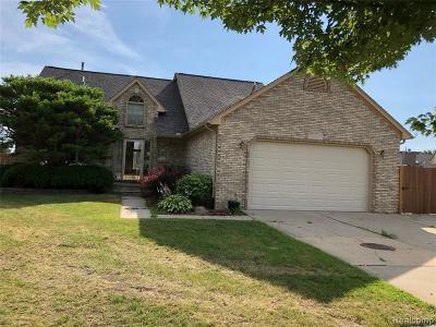 Macomb Single Family Home For Sale: 15887 Spur Dr