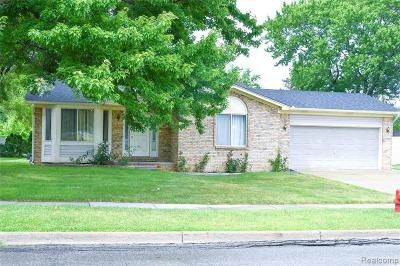 Warren Single Family Home For Sale: 5037 E 11 Mile Rd
