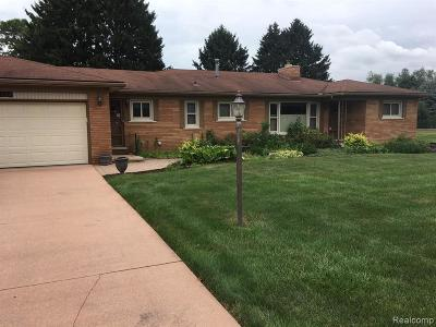 Macomb Single Family Home For Sale: 56428 Meadow Lawn Dr Dr