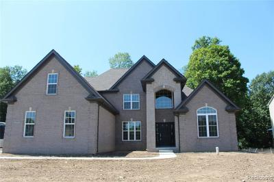 Clarkston Single Family Home For Sale: 9609 Windsor Ln