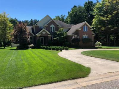 Burtchville Single Family Home For Sale: 3823 Conifer Crt