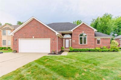 New Baltimore Single Family Home For Sale: 37210 Creekview Ln