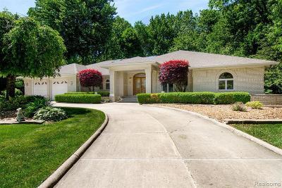 Clinton Township Single Family Home For Sale: 37503 Camellia Lane
