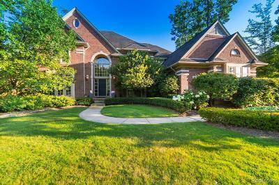 Clarkston Single Family Home For Sale: 6957 Oakhurst Ridge Rd