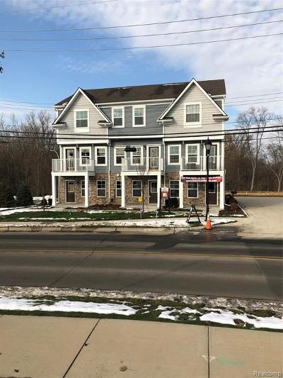 Auburn Hills Condo/Townhouse For Sale: 3315 N Squirrel Crt N