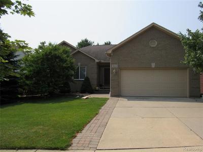 Auburn Hills Single Family Home For Sale: 3612 Thornwood Dr