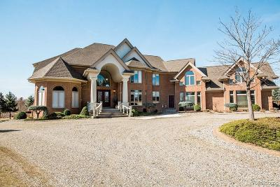 Oakland Twp Single Family Home For Sale: 1284 Parks