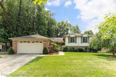 Livonia Single Family Home For Sale: 34535 Middleboro St