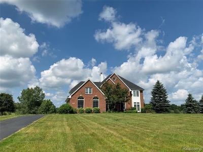 Clarkston Single Family Home For Sale: 4941 Menominee Ln