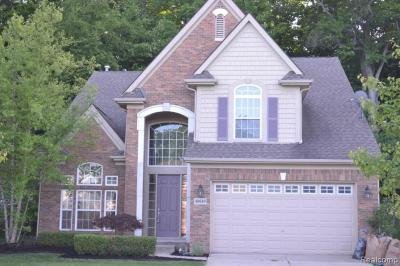 Northville Single Family Home For Sale: 49649 S Glacier