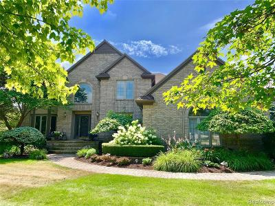 Shelby Twp Single Family Home For Sale: 14462 Stratford Crt