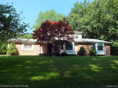 Northville Single Family Home For Sale: 22077 Garfield Rd