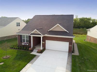 Canton Single Family Home For Sale: 50026 Alden