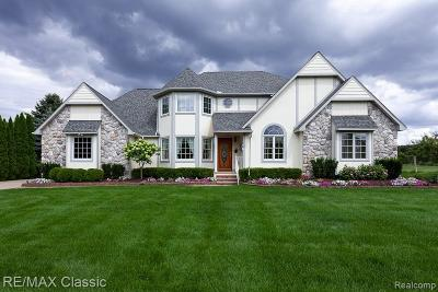 Northville Single Family Home For Sale: 21760 Garfield Rd
