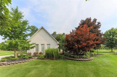Canton Single Family Home For Sale: 8244 N Pointe Crt