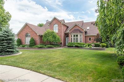 Sterling Heights Single Family Home For Sale: 43674 Vintage Oaks Dr