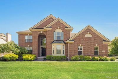 Canton Single Family Home For Sale: 47785 Lindenhurst Blvd
