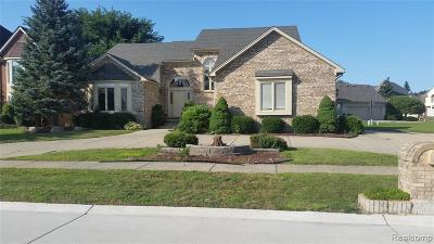 Sterling Heights Single Family Home For Sale: 2469 Hornbeam Dr