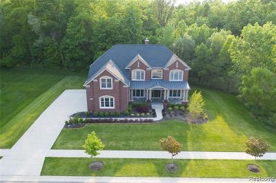 Northville Single Family Home For Sale: 17475 Briar Ridge Ln