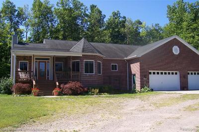 Lapeer Single Family Home For Sale: 5695 Sister Lake