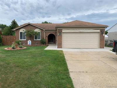 Sterling Heights Single Family Home For Sale: 35824 Shell Dr