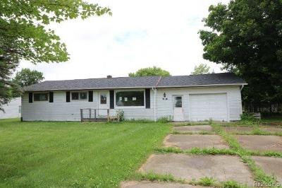 Lapeer Single Family Home For Sale: 4136 Lapeer St