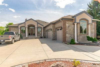 Shelby Twp Single Family Home For Sale: 13790 Patterson Dr