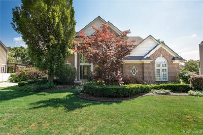 Northville Single Family Home For Sale: 16793 Abby Cir