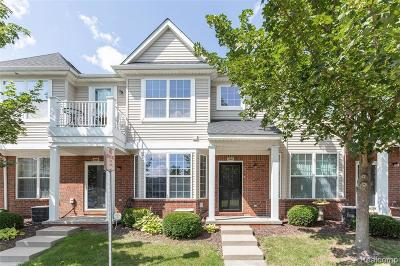 Sterling Heights Condo/Townhouse For Sale: 3835 Cherry Creek Ln