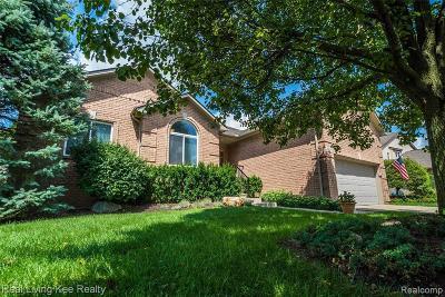 Auburn Hills Single Family Home For Sale: 4429 Thornhill Dr
