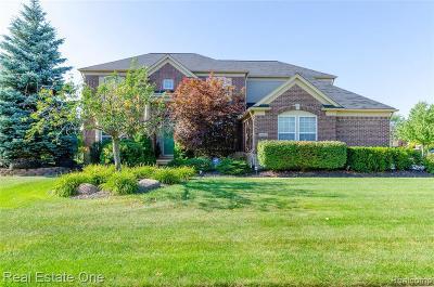 Northville Single Family Home For Sale: 16602 Johnson Creek Dr