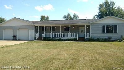 Lapeer Single Family Home For Sale: 4385 Briggs Rd