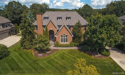 Clarkston Single Family Home For Sale: 6944 Oakhurst Ridge Rd