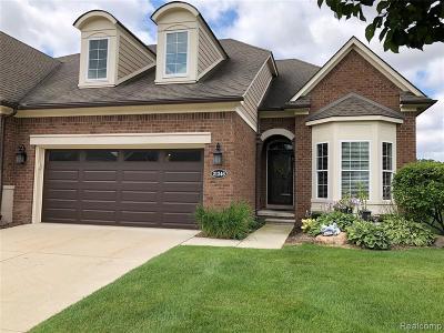 Clinton Township Condo/Townhouse For Sale: 21246 Lilac Ln