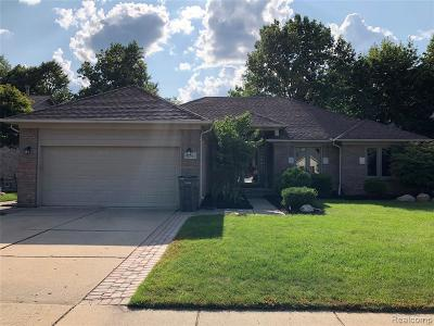 Clinton Township Single Family Home For Sale: 42163 Brianna Dr