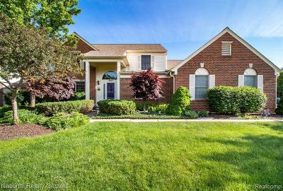 Troy Single Family Home For Sale: 2871 Santia Dr