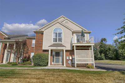 Chesterfield Condo/Townhouse For Sale: 51603 Hale Ln