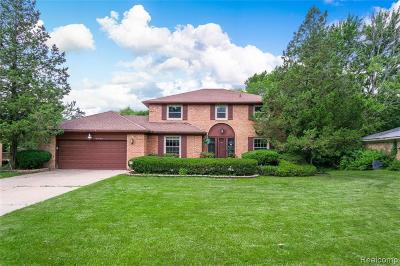 West Bloomfield Single Family Home For Sale: 5466 W Bloomfield Lake Rd